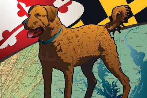 Maryland Chessie Art Print by Joe Barsin, 16x12, Chesapeake Bay Retriever