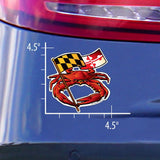 Measurements of Red Crab Maryland Banner Sticker