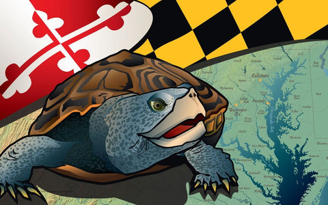Maryland Terrapin Door Mat by Joe Barsin, 30x18