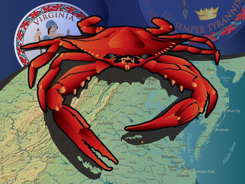 Virginia Crab Art Print by Joe Barsin, 16x12