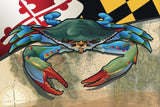 Maryland Blue Crab Canvas Print by Joe Barsin, 12x8x.75