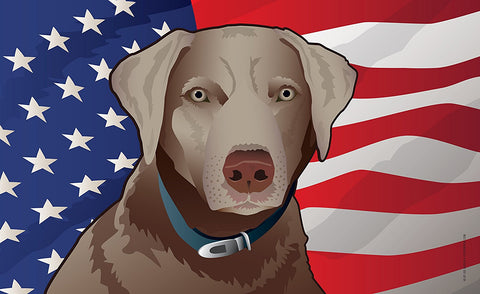 USA Silver Lab Door Mat by Joe Barsin, 30x18