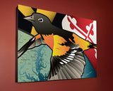Display of Maryland Oriole Canvas Print by Joe Barsin