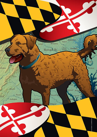 Maryland Chessie Large House Flag by Joe Barsin, 28x40, Chesapeake Bay Retriever