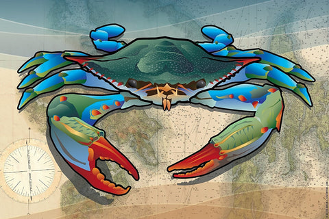 Coastal Blue Crab Canvas Print by Joe Barsin, 12x8x.75