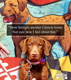 Fan Review - Maryland Chessie Large House Flag by Joe Barsin, 28x40, Chesapeake Bay Retriever