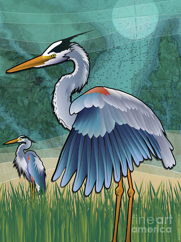 Blue Herons of The Chesapeake Bay - Art Print