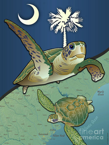 South Carolina Sea Turtles - Art Print