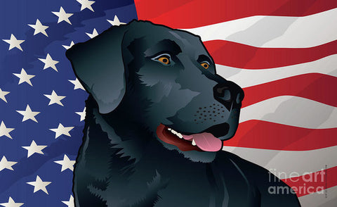 USA Black Lab - Art Print