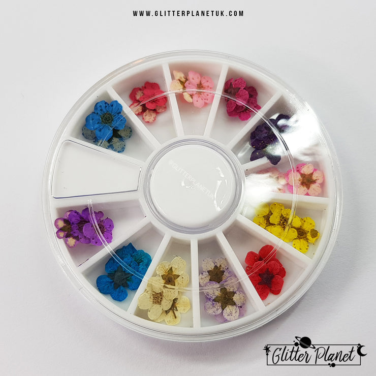 Dried Flowers - Nail Art Wheel