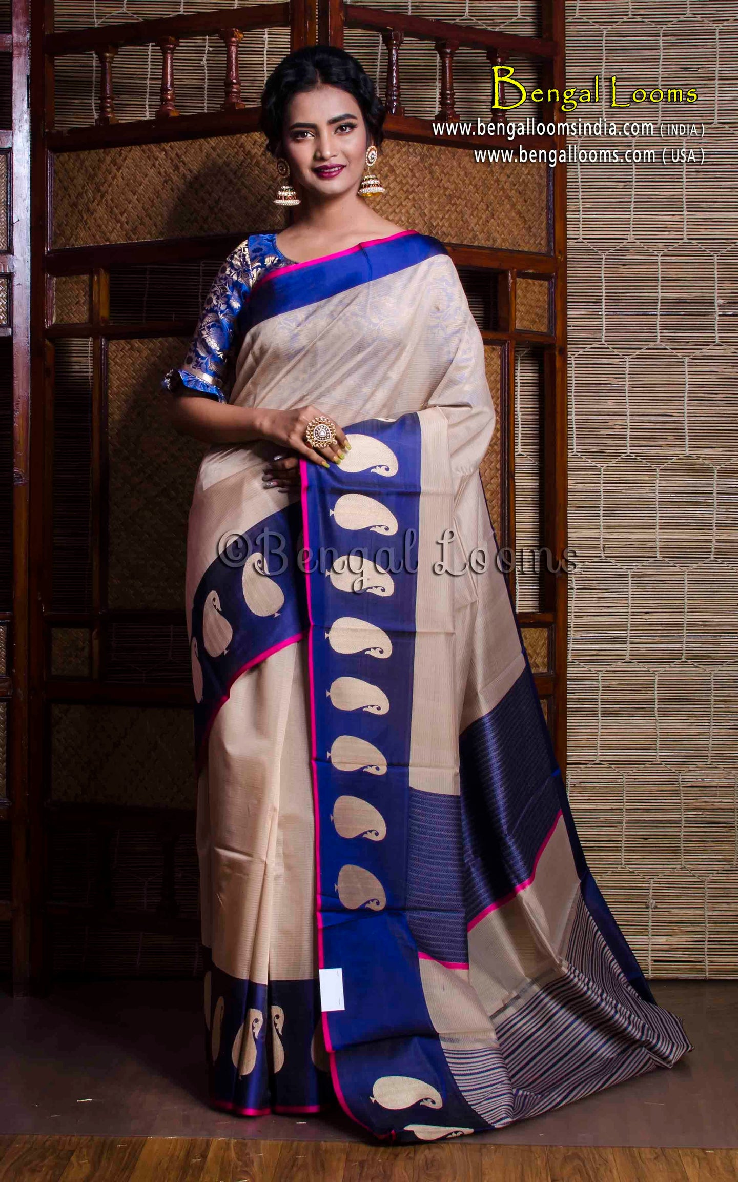 Cotton Silk Banarasi Saree with Satin Border in Beige and Blue