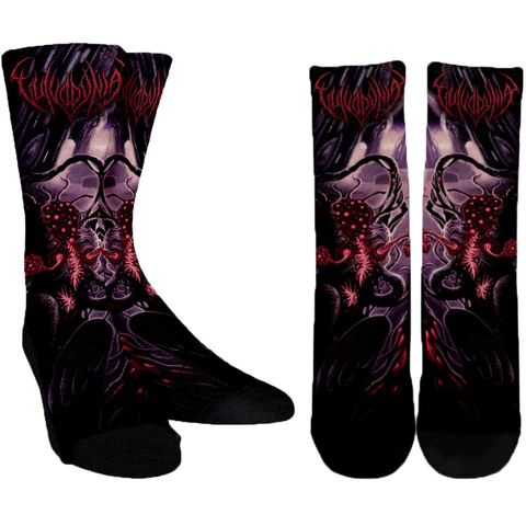 Official Vulvodynia Finis Omnium Ignorantiam Socks - Crowdkill Apparel