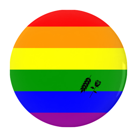lgbtq+ pride button - Bread and Roses Apparel