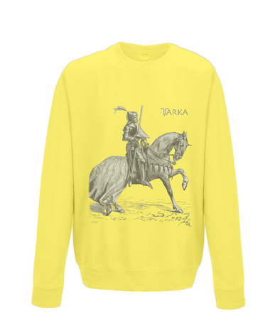Boys Sweatshirt Knight