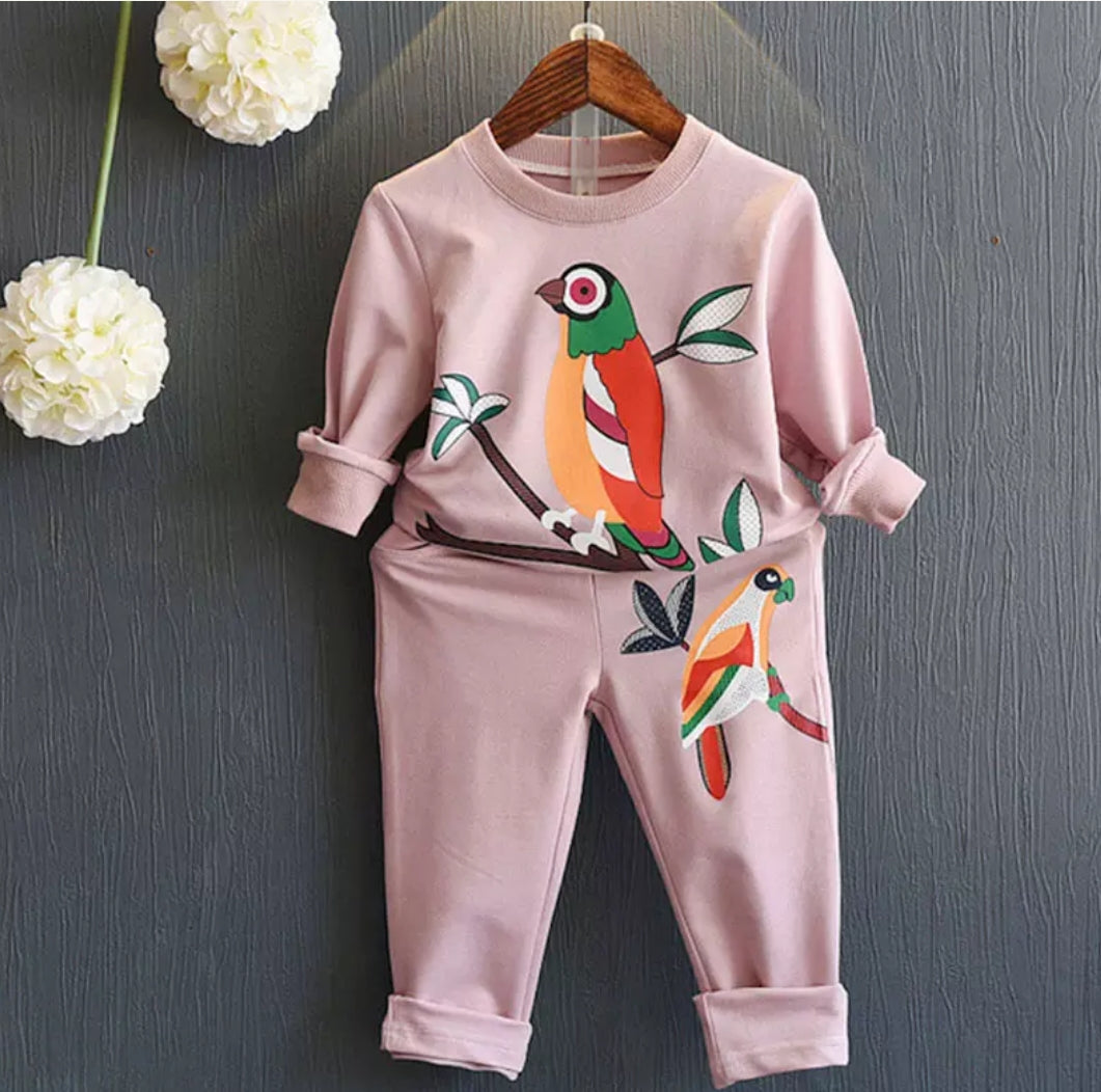 Girls Pink parrot set