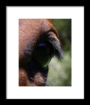 Kijken Glas - Framed Print - The Horse Barn