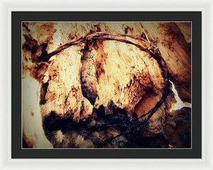 Parte Superiore Delle Spine - Framed Print - The Horse Barn