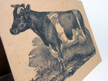 "Vintage Style 4X6"" Notecards ~ Holstein Cow"