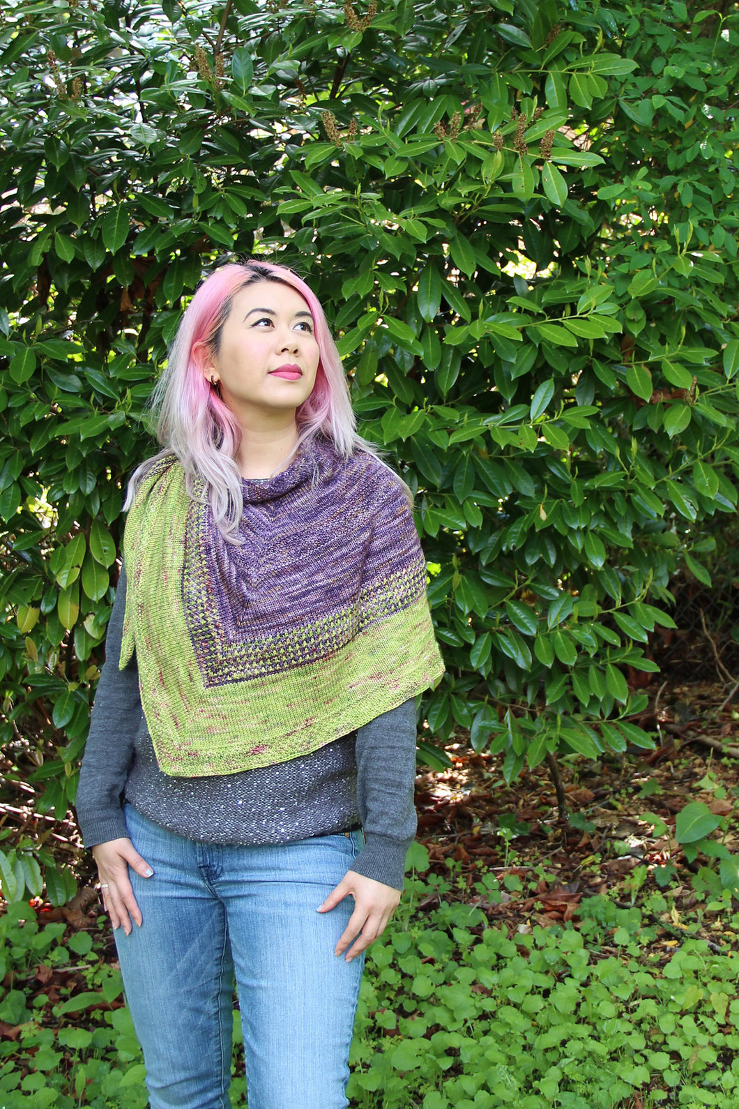 Butterfly Wings Shawl Kit