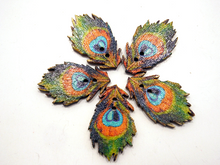 "Wooden Buttons Set of 5: Printed Wooden Peacock Buttons ~ Large Flat Peacock Wooden Buttons 1 3/8"" Long 7/8"" Wide"