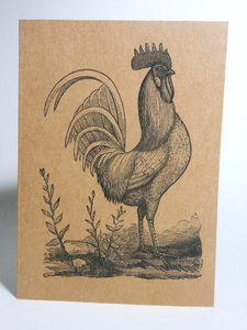 "Vintage Style 4X6"" Notecards ~ Rooster"
