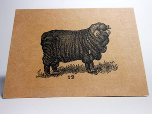 "Vintage Style 4X6"" Notecards ~ Sheep #12"