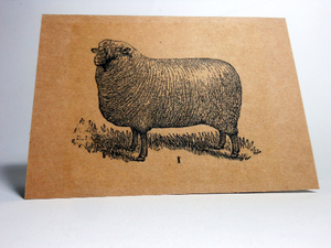 "Vintage Style 4X6"" Notecards ~ Sheep #1"