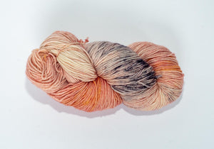 Temporum: Salmon Run ~ Superwash Merino, Cashmere, Nylon