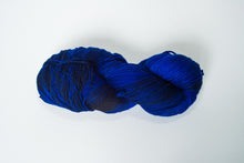 Temporum: Steller's Jay ~ Superwash Merino, Cashmere, Nylon