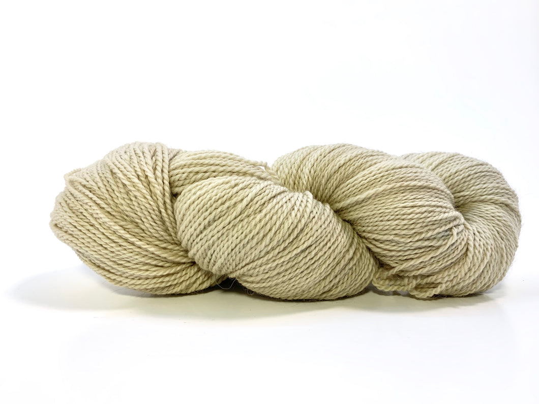Forage: Horsetail, Fertile 0619 ~ Organic Washable Wool
