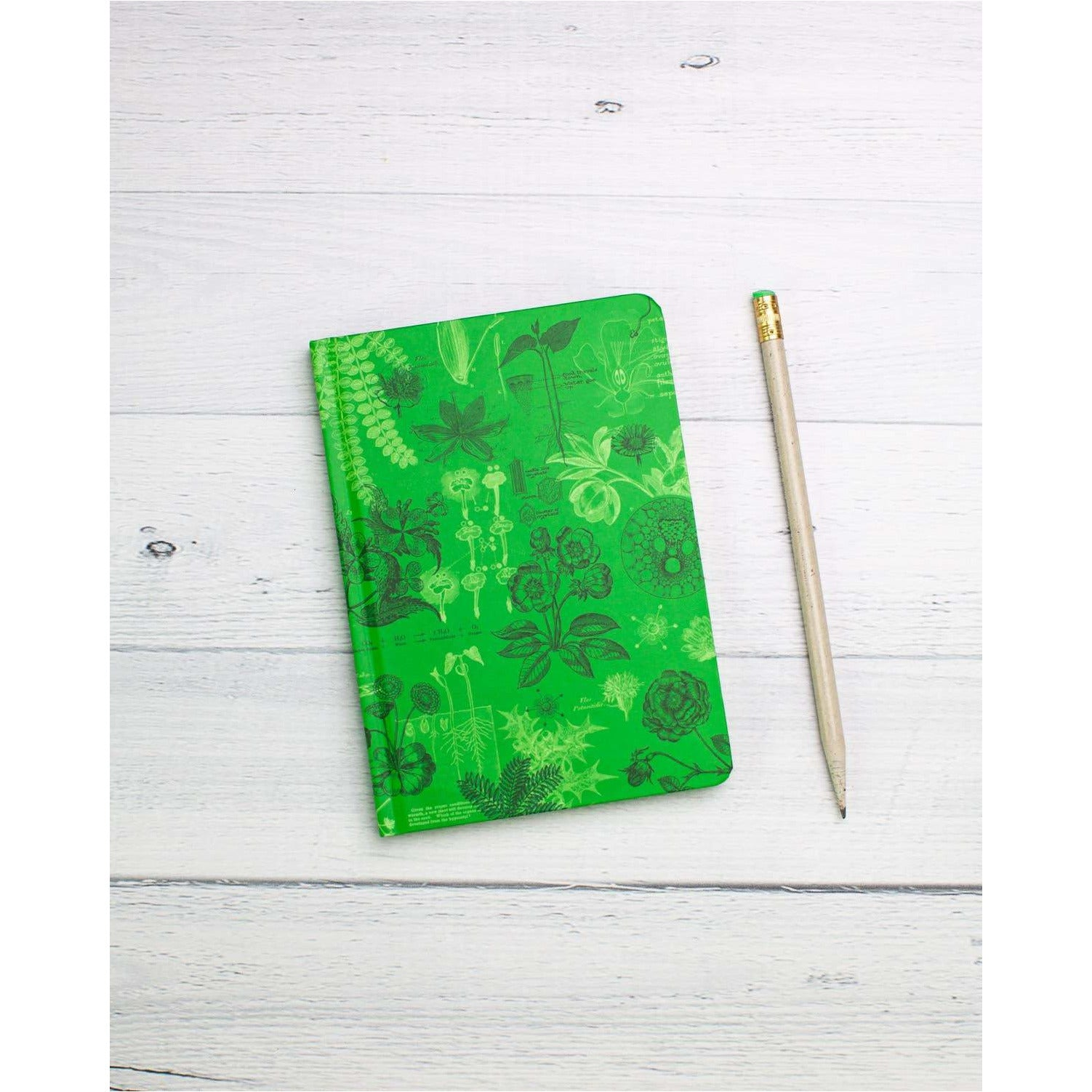 Botany Mini Hardcover Notebook | Dot Grid