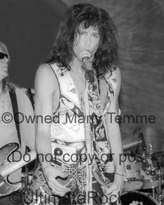 Photo of Steven Tyler of Aerosmith in concert in 1994 by Marty Temme