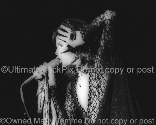 Photo of Steven Tyler of Aerosmith in concert in 1974 by Marty Temme