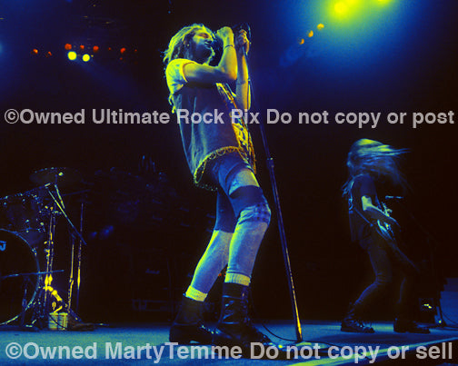Art Print of Layne Staley of Alice In Chains performing onstage in 1991 by Marty Temme