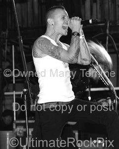 Photos of Singer Chester Bennington of Linkin Park Performing Onstage with Alice in Chains by Marty Temme