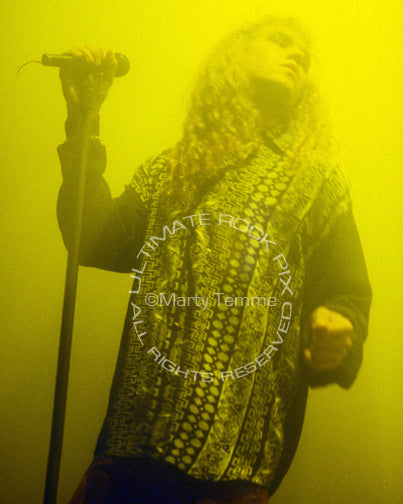 Photo of Daniel MacMaster of Bonham performing in concert in 1992 by Marty Temme