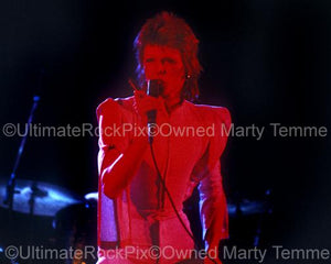 Photos of David Bowie in Concert in 1973 by Marty Temme