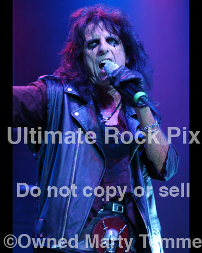 Photo of singer Alice Cooper performing in concert in 2006 by Marty Temme