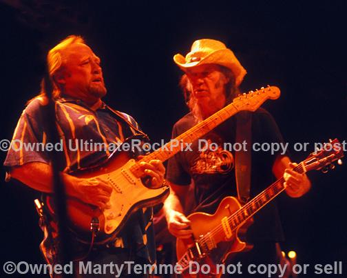 Photos of Stephen Stills and Neil Young of CSNY in Concert by Marty Temme