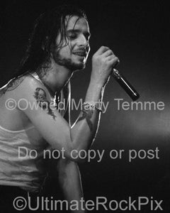 Black and white photo of David Gahan of Depeche Mode in concert by Marty Temme