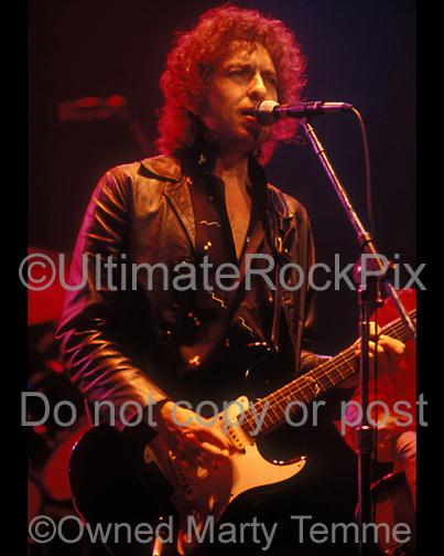 Photos of Musician Bob Dylan in Concert in 1980 by Marty Temme