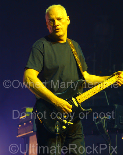 Art Print of David Gilmour of Pink Floyd playing his black Stratocaster in concert by Marty Temme