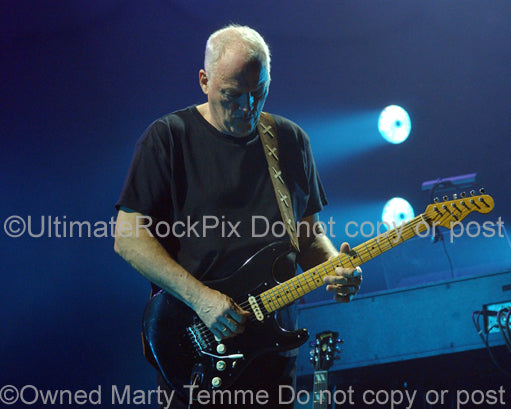 Photo of David Gilmour playing his black Stratocaster in concert by Marty Temme