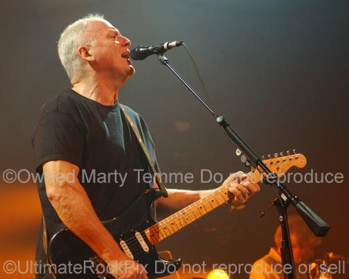 Photos of Guitar Player David Gilmour of Pink Floyd Playing his Fender Stratocaster in Concert by Marty Temme