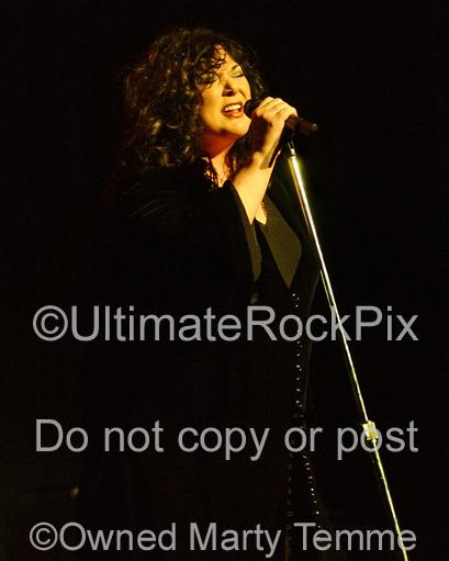 Photos of Singer Ann Wilson of Heart in Concert by Photographer Marty Temme