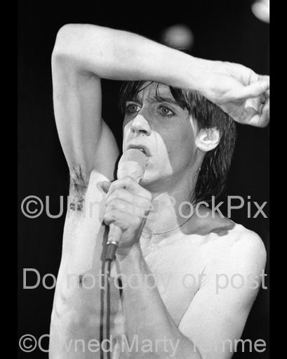 Photo of singer Iggy Pop in concert in 1977 by Marty Temme