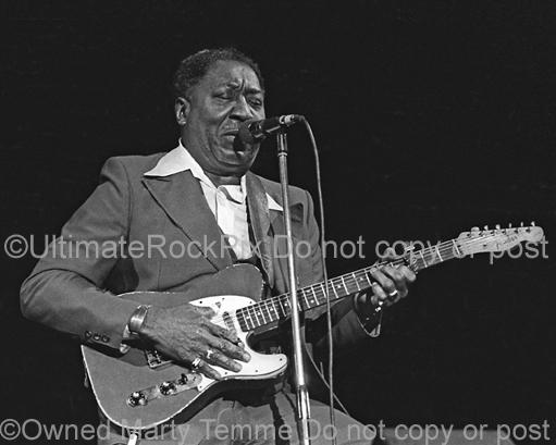 Black and White Photo of Blues Legend Muddy Waters Playing His Fender Telecaster in Concert in 1979 by Marty Temme