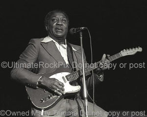 Black and White Photo of Muddy Waters Playing His Fender Telecaster in Concert in 1979 by Marty Temme