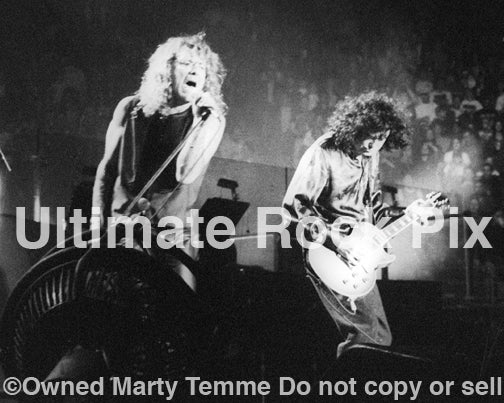Photo of Robert Plant and Jimmy Page performing onstage in 1995 by Marty Temme