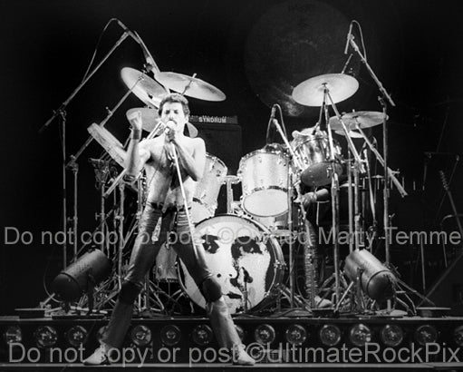 Black and white photo of Freddie Mercury of Queen onstage in 1980 by Marty Temme